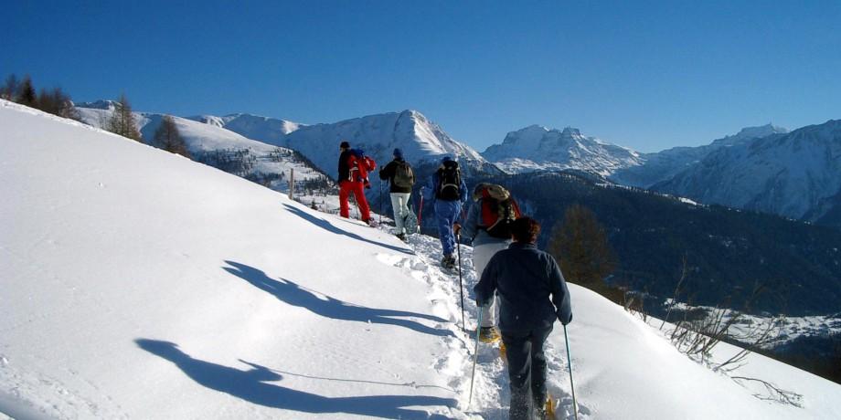 SnowRabbit Snowshoes Trail