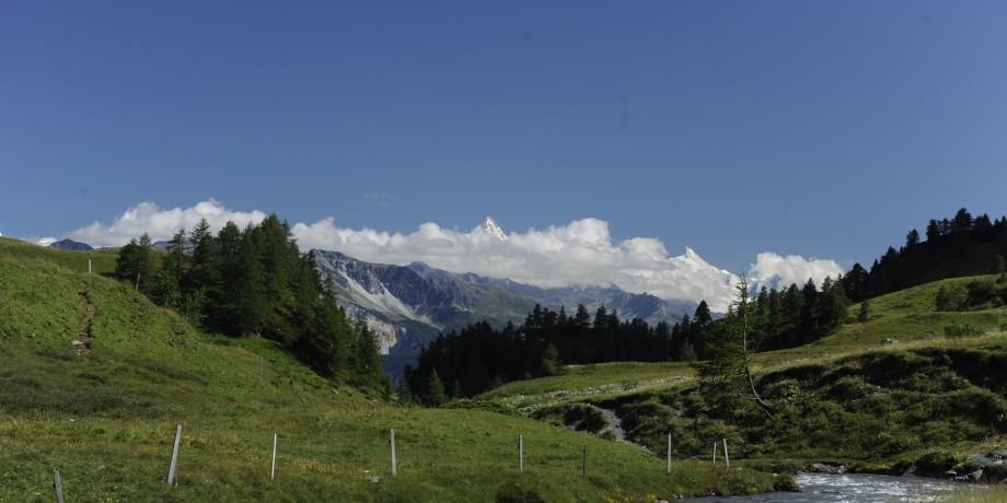 100th anniversary trail