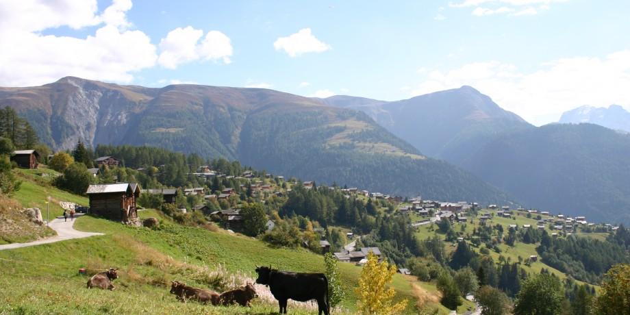 Zum Gletscherblick in Bellwald