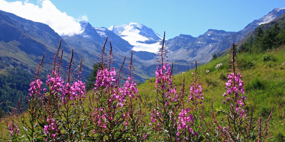 Bistinen Pass