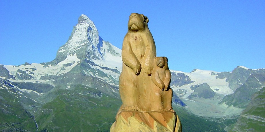 Der Murmelweg – Zermatt