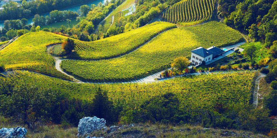 Entdeckungsreise durch das Weingut Rouvinez