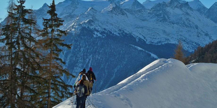 Snowshoe trail in Zeneggen, 9.6 km