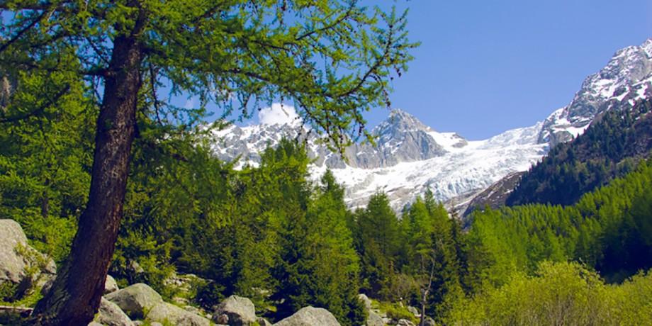 Tour de la Vallée du Trient