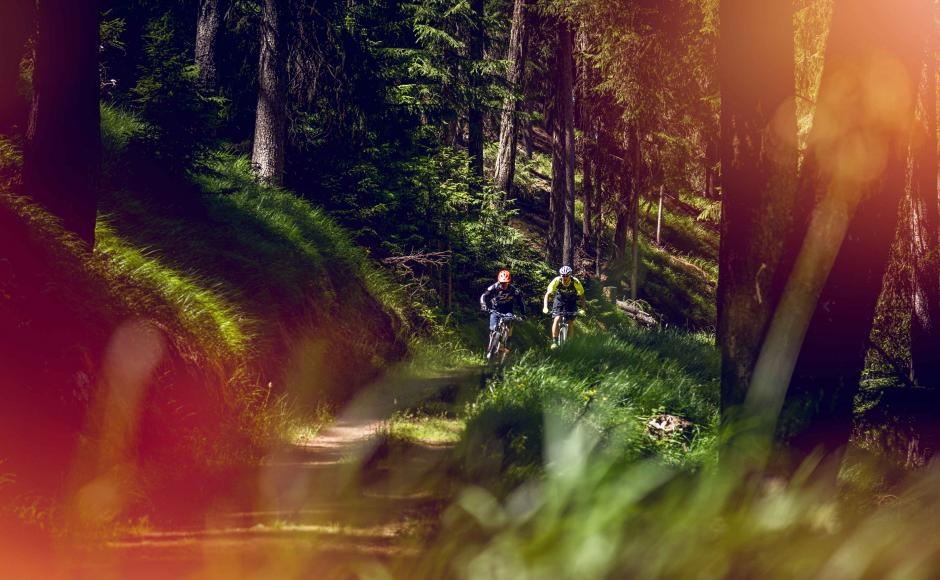 2 e-bike cyclists in the forest, Valais Wallis Switzerland