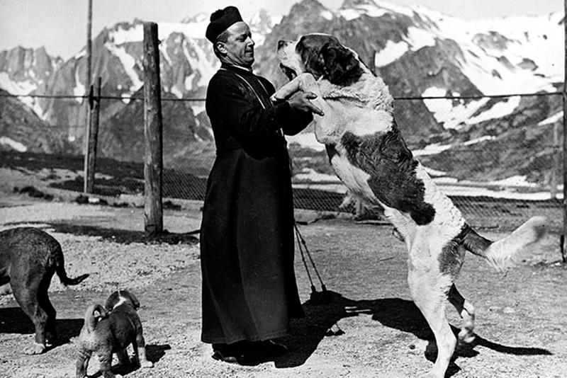 Canon and dog at Great St. Bernard, Ca. 1950–1960, ©Max Kettel, UVT, Médiathèque Valais – Martigny