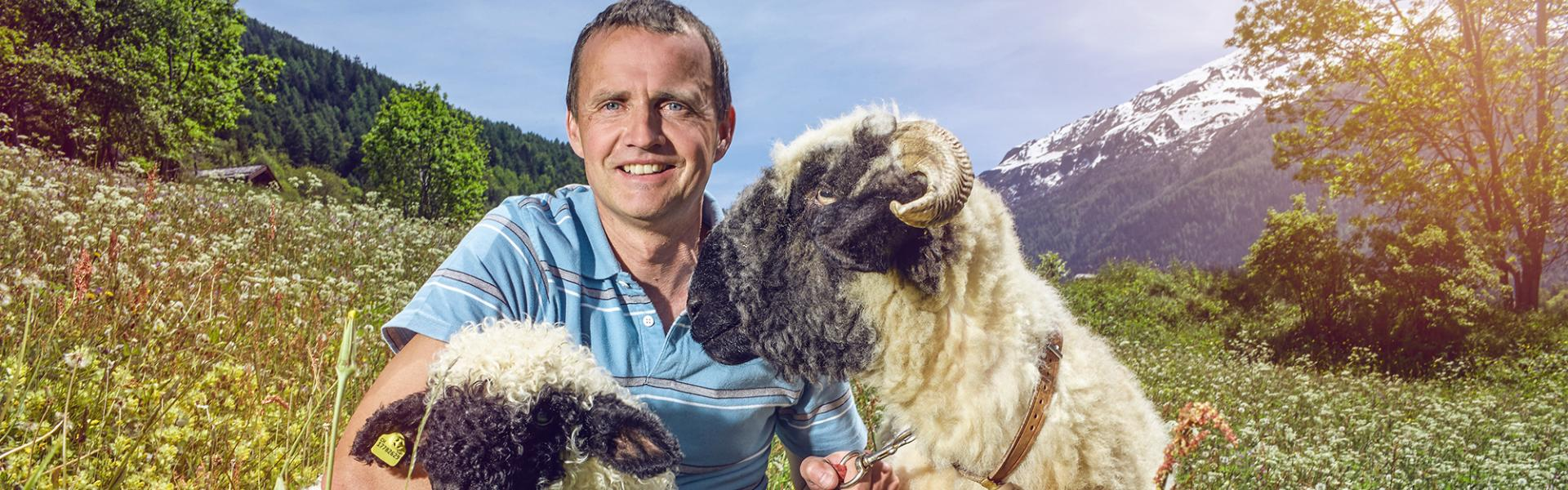 Didier de Courten and Blachnose breed