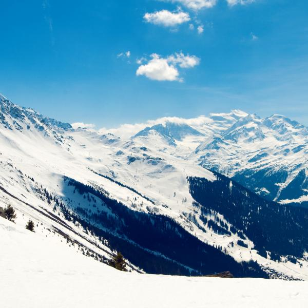 Region Verbier during winter, panorama, alps, sled, Valais