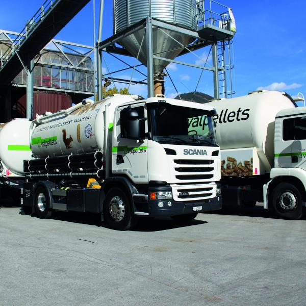 Valpellets AG in Uvrier, Wallis