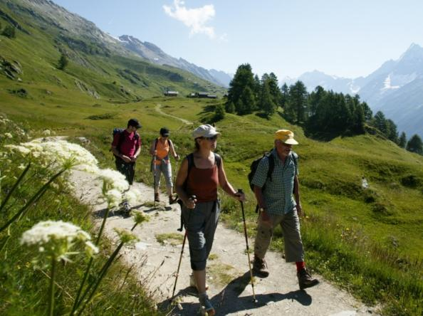 Experience pure nature with Alpavia! Alpavia is a tour operator which offers individual hikes of several days and Flyer bike tours including luggage transport, Valais