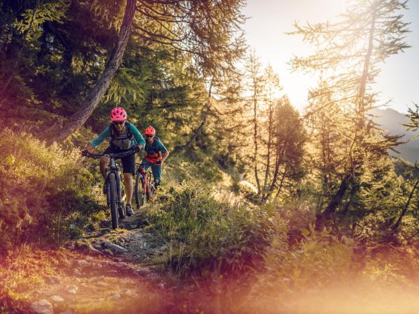 Mountainbiken in Leukerbad, Wald,  Wallis, Schweiz