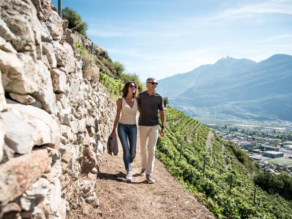 Wine trail, summer, Fully, Valais, Switzerland