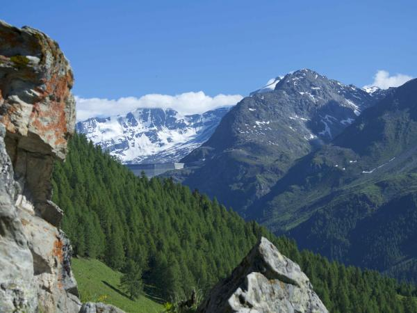 Alpes Trail, Val d'Herens, Valais, Suisse