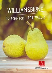 Broschüre Williamsbirne, Williamine, Wallis, Schweiz