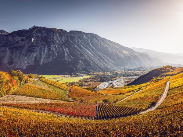 wine tourism, Marathon of Taste, Valais, Switzerland