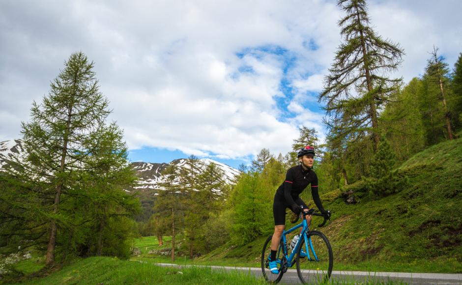 On the Valais Cycling Tour roads, Cyclist in the forest